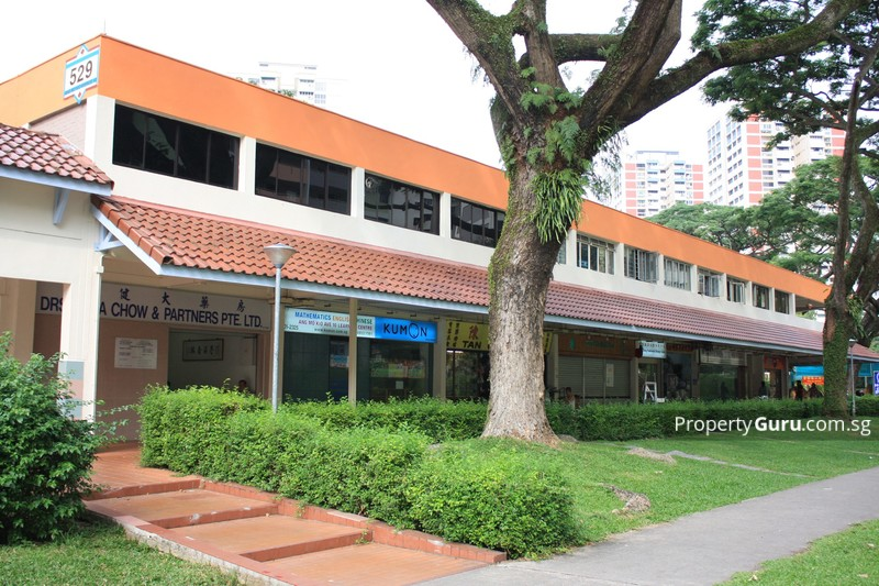 529 Ang Mo Kio Avenue 10 #0
