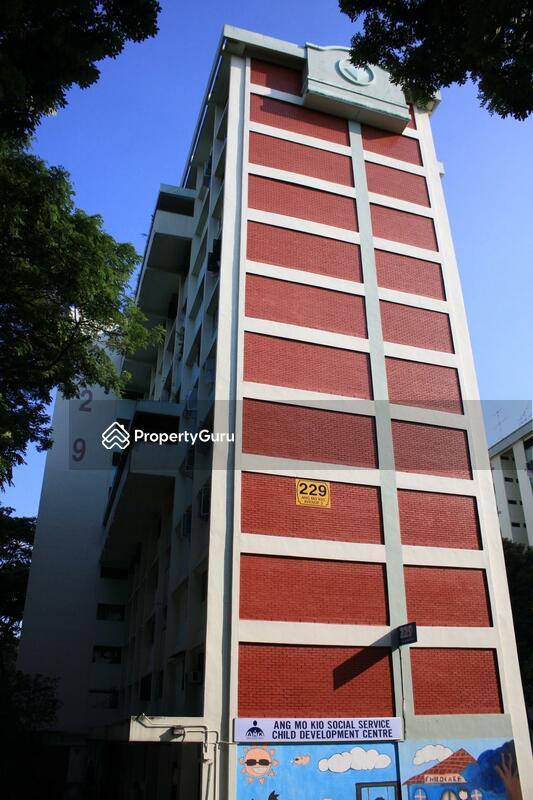 229 Ang Mo Kio Avenue 3 #0