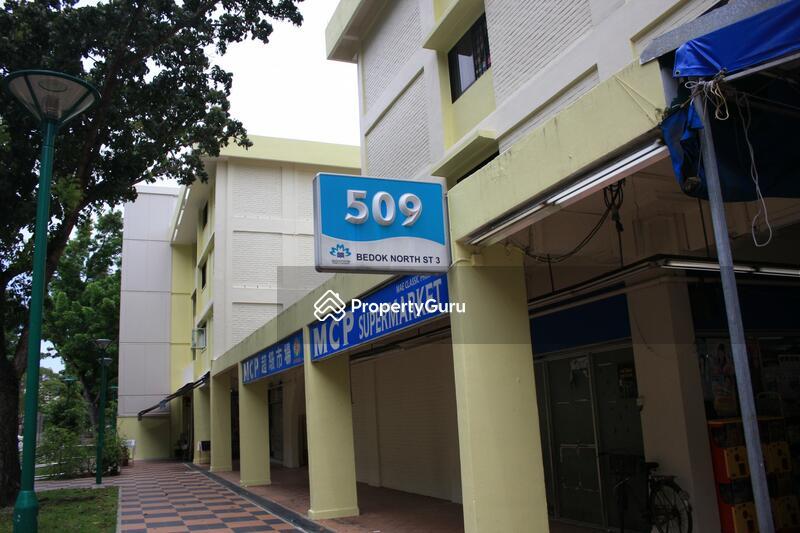 509 Bedok North Street 3 #0