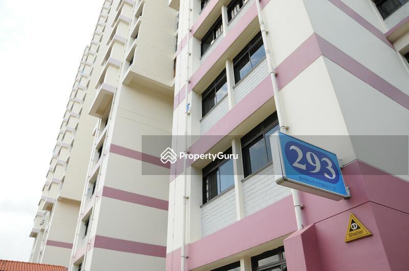 293 Bishan Street 22 #0