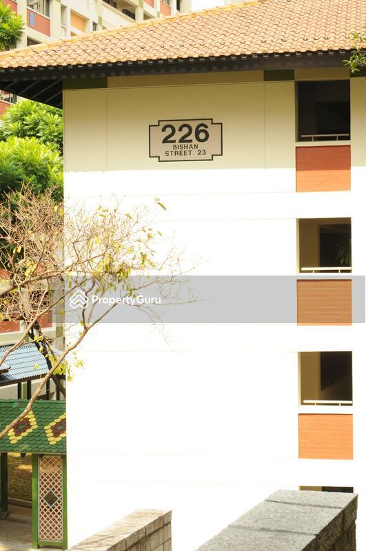226 Bishan Street 23 #0
