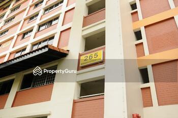 265 Bishan Street 24