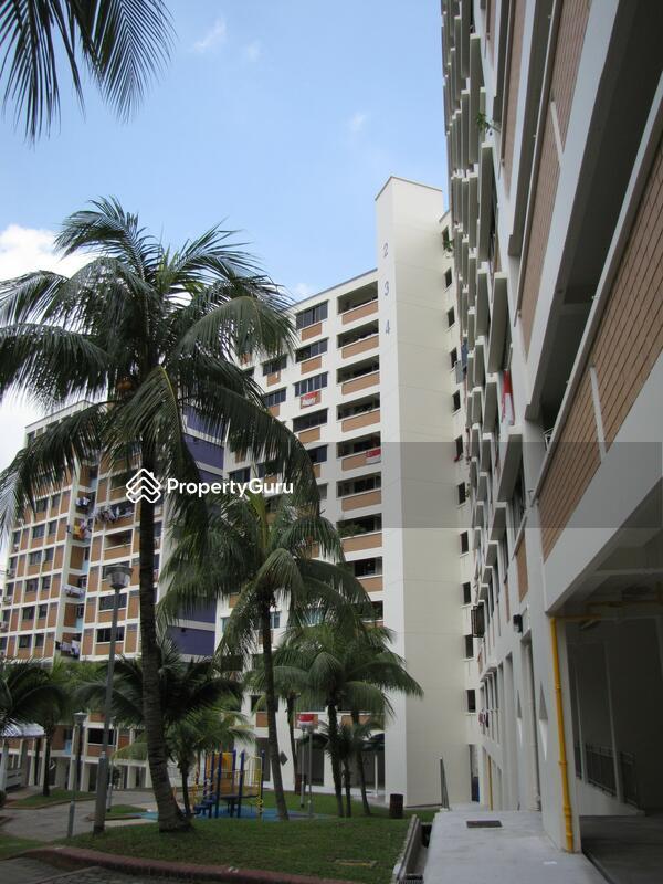 234 Bukit Panjang Ring Road #0