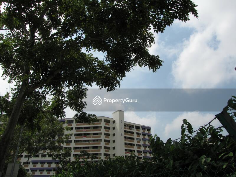 238 Bukit Panjang Ring Road #0