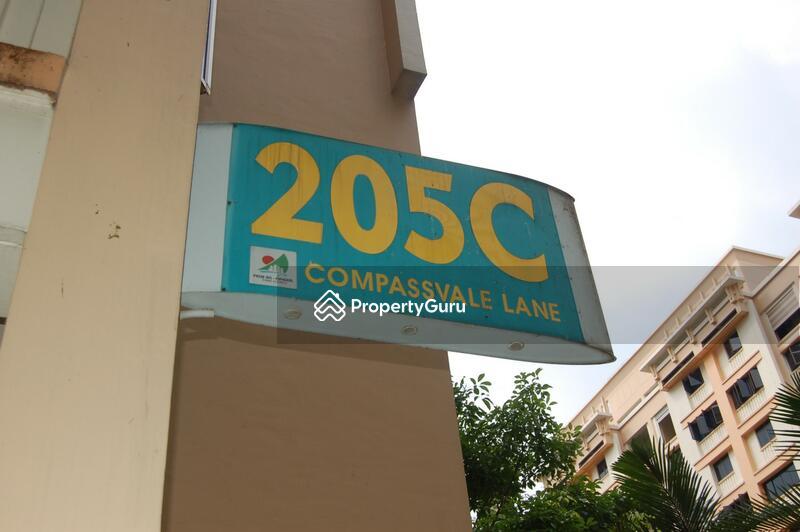 205C Compassvale Lane #0